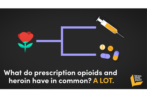 New Campaign Aims to Reduce Opioid Overdoses